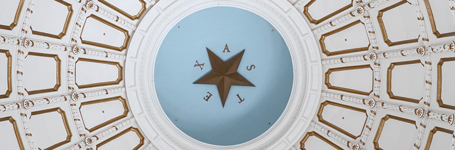 Government | Two Steps  One Sticker  Texas DMV